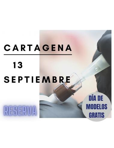 Reserva curso en Cartagena: Micropigmentación